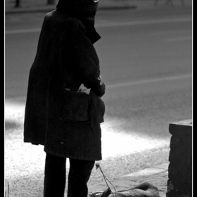 Homeless with pet