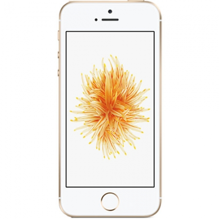 Apple iPhone SE - 4'', Dual-Core, 2GB RAM, 16GB, 4G - Auriu