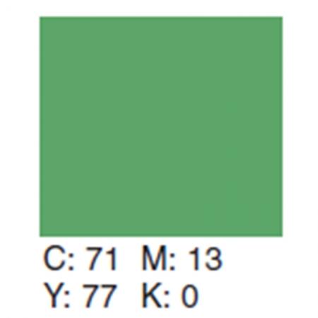 Creativity Backgrounds Apple Green 31- Fundal carton 2.72 x 11m