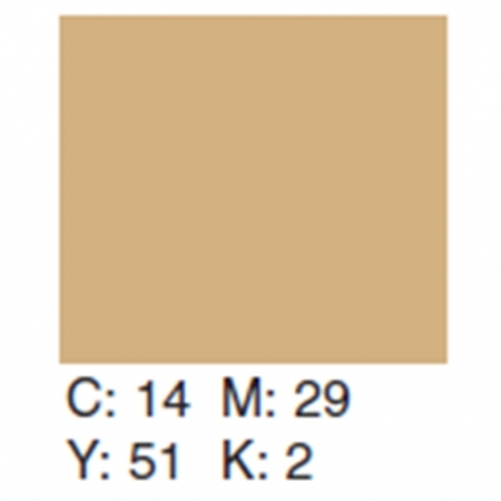 Creativity Backgrounds Hazelnut 25 - Fundal carton 2.72 x 11m