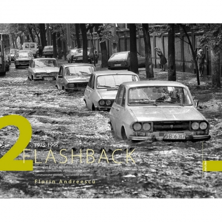 Flashback II - Florin Andreescu
