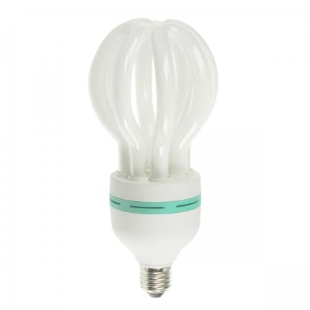 Kathay Lotus bulb - bec fluorescent 30W E27