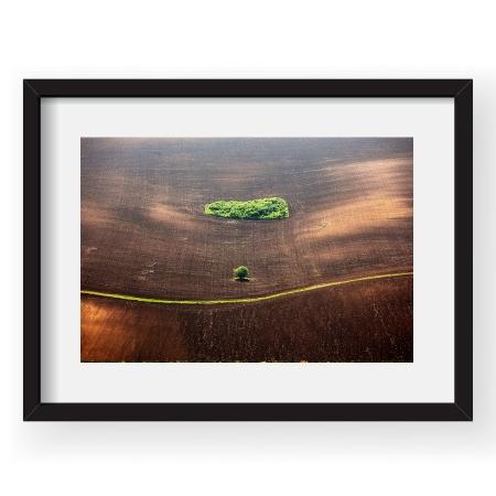 Lost in a beautiful world - Tablou 40x60cm Sorin Onisor 03