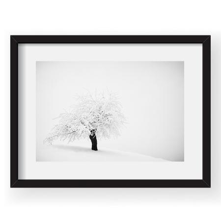 Hibernal haiku - Tablou 40x60cm Andrei Baciu 03
