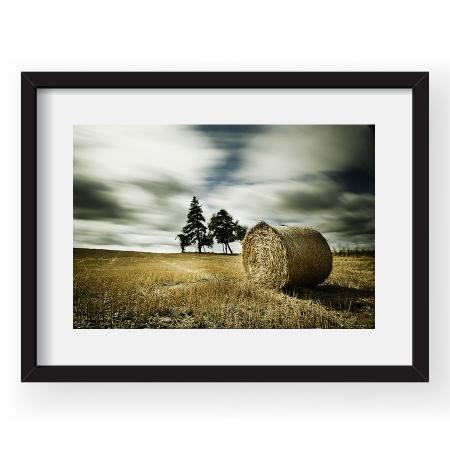 Wind dynamics – Tablou 40x60 Sorin Vidis 06