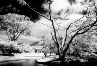 Cokin P007 Infrared