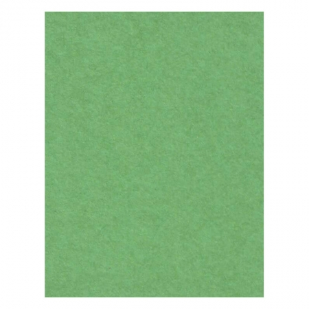 Creativity Backgrounds Apple Green 31- Fundal carton 2.72 x 11m