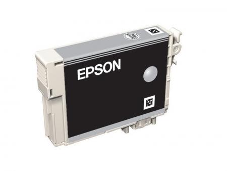 Epson T0967 - Cartus Imprimanta Light Black pentru Epson R2880