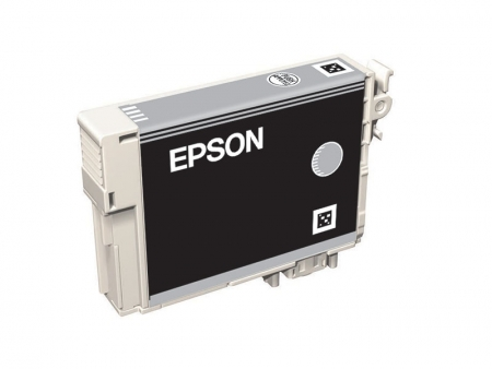 Epson T0969 - Cartus Imprimanta Light Light Black pentru Epson R2880