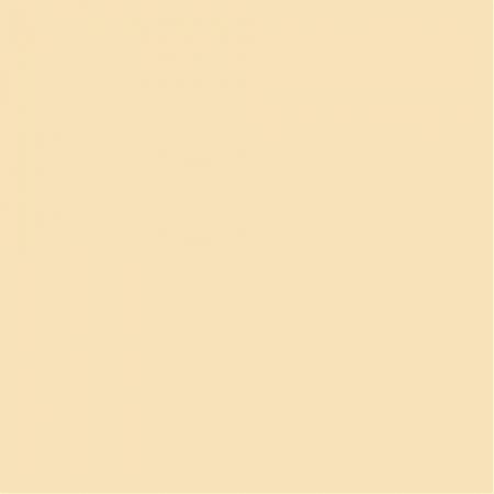 Fundal carton 2.75 x 11m - Chardonnay 08 / Ivory