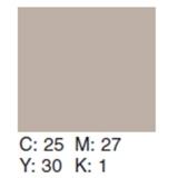 Creativity Backgrounds Silver Birch 30 - Fundal carton 2.72 x 11m